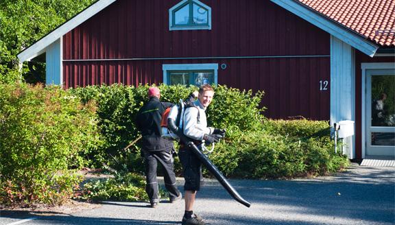Upplandsfastighetservice i Uppsala AB - lövblåsning